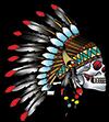 Native Ink Logo